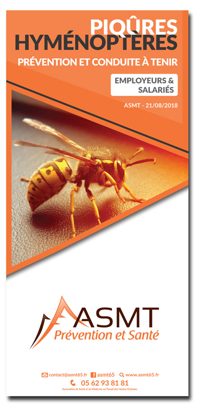 Piqûres Hyménoptère : prévention et conduite à tenir